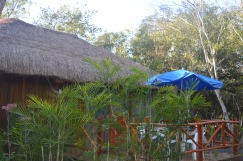 Our cabin in the jungle